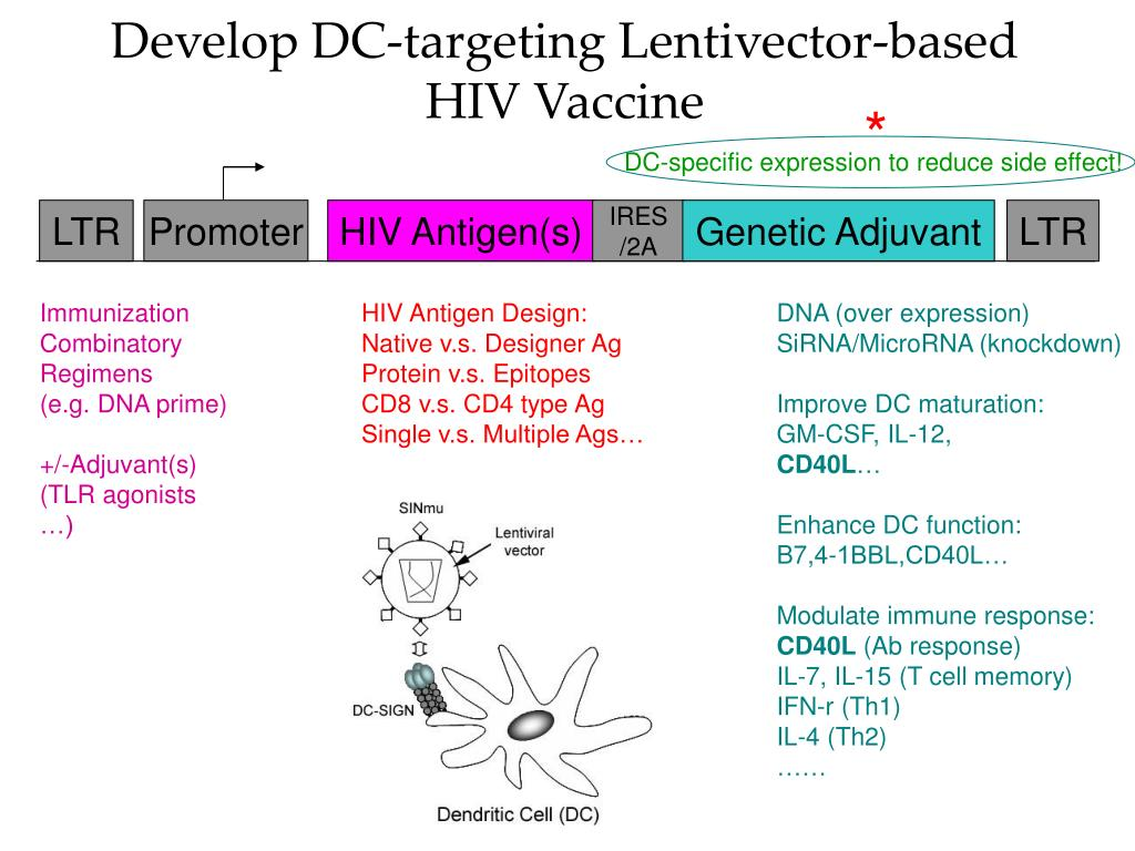 Develop DC-targeting Lentivector-based HIV Vaccine