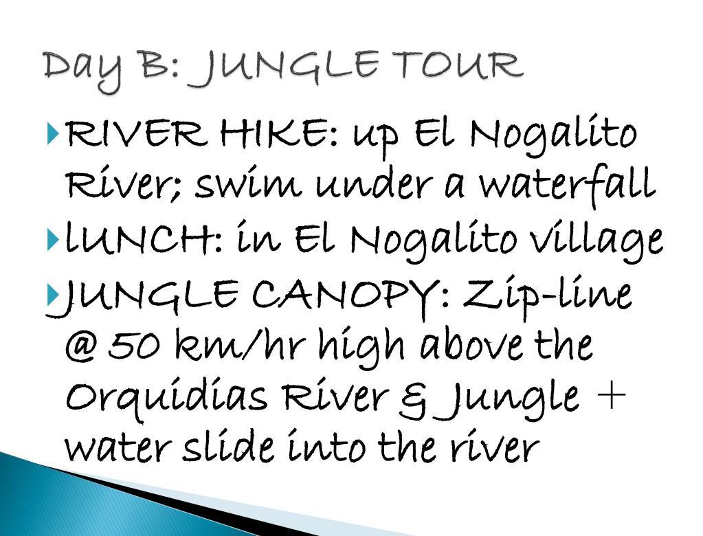 Day B:  JUNGLE TOUR