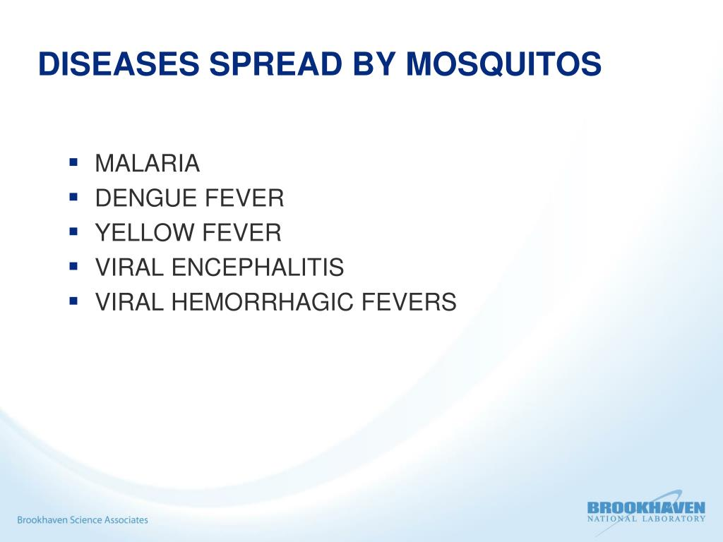 DISEASES SPREAD BY MOSQUITOS