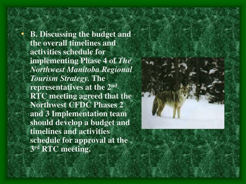 B. Discussing the budget and the overall timelines and activities schedule for implementing Phase 4 of