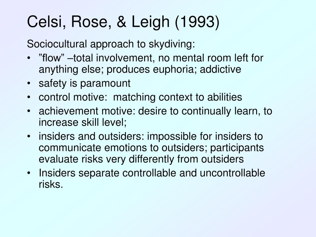 Celsi, Rose, & Leigh (1993)