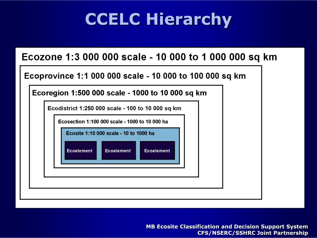 CCELC Hierarchy