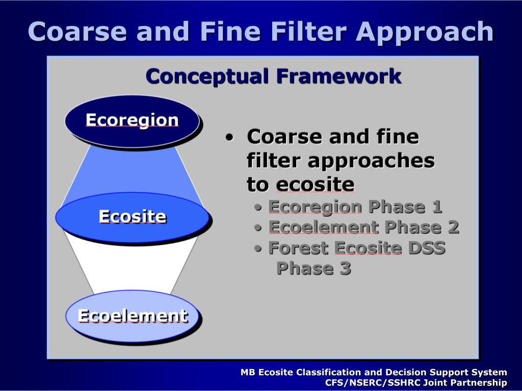 Coarse and Fine Filter Approach