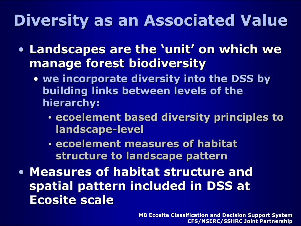Diversity as an Associated Value