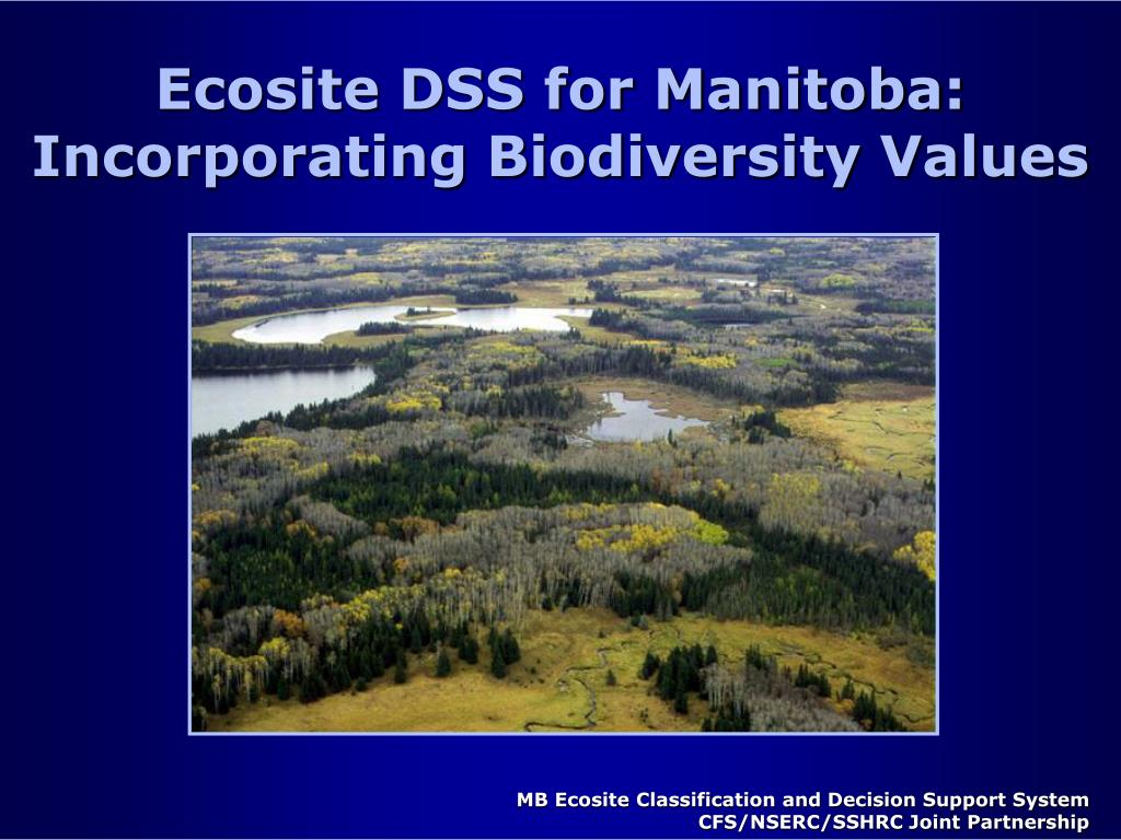 Ecosite DSS for Manitoba: Incorporating Biodiversity Values