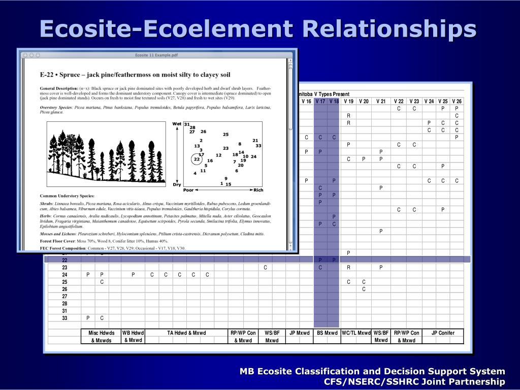 Ecosite-Ecoelement Relationships