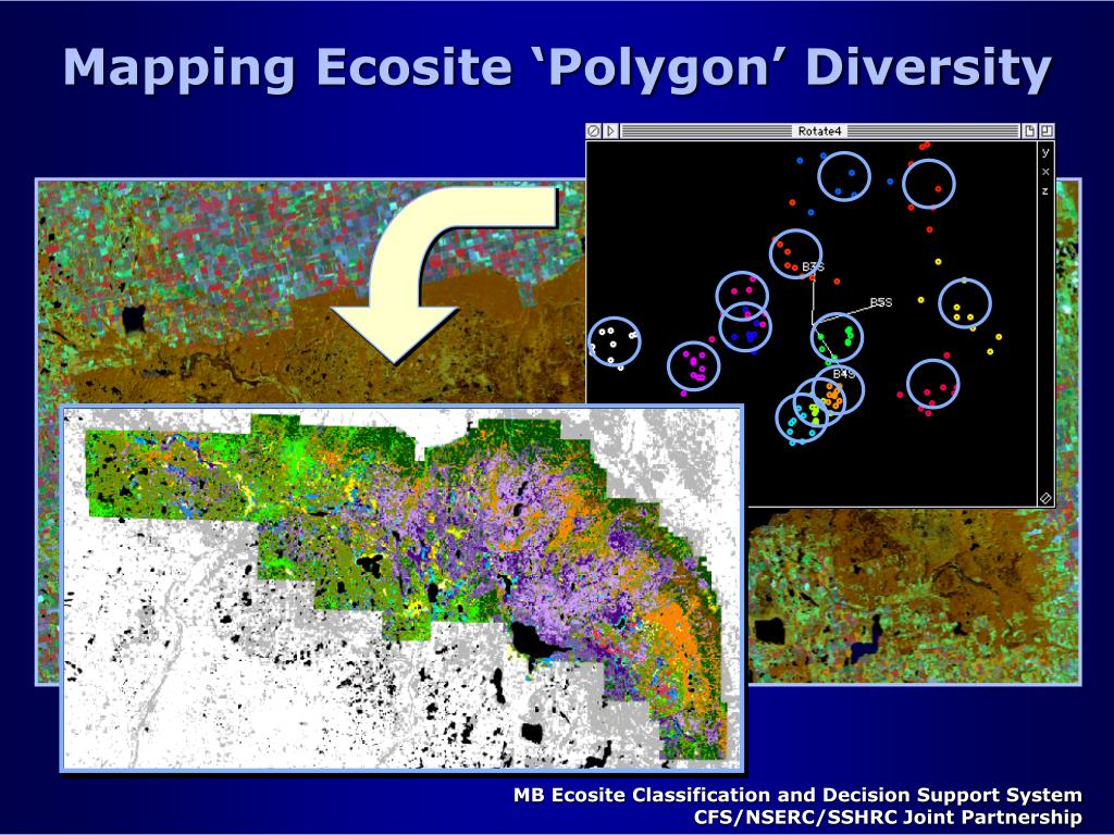 Mapping Ecosite 'Polygon' Diversity