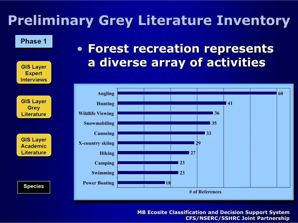 Preliminary Grey Literature Inventory