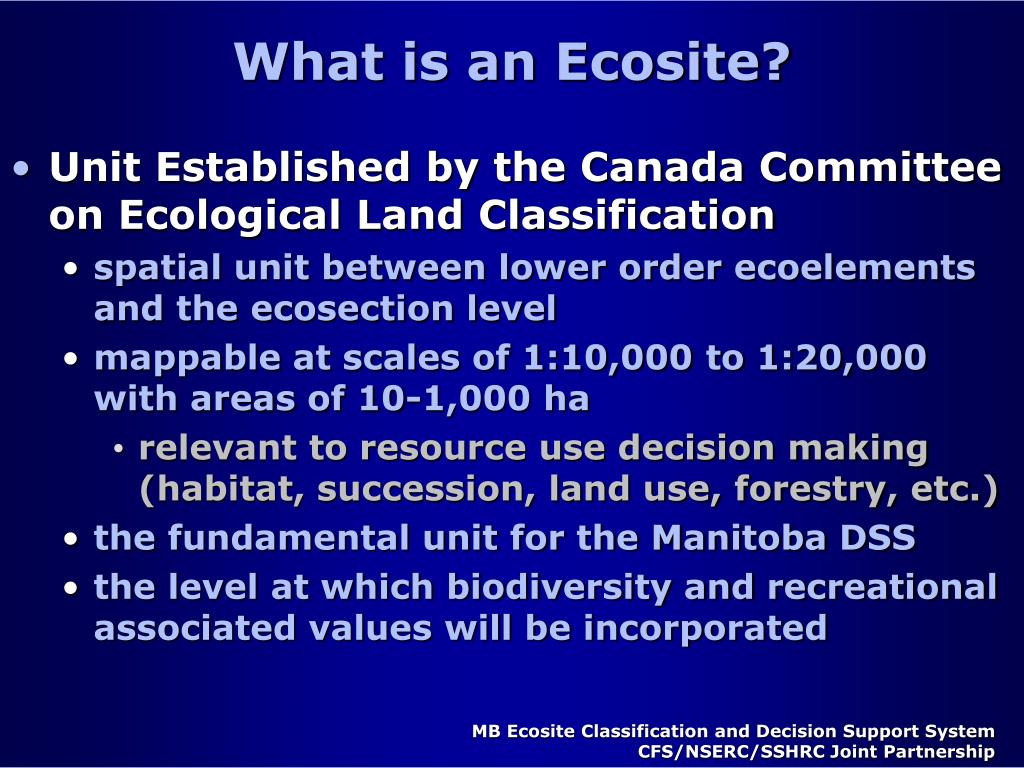 What is an Ecosite?