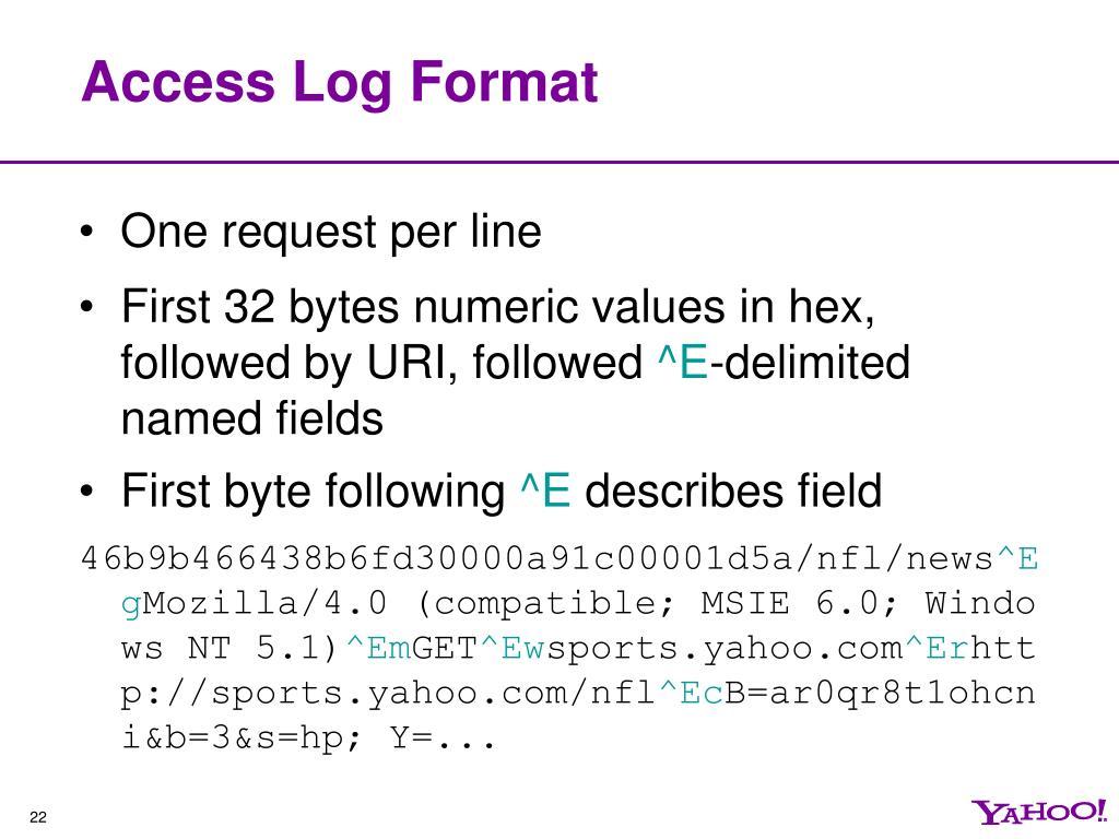 Access Log Format