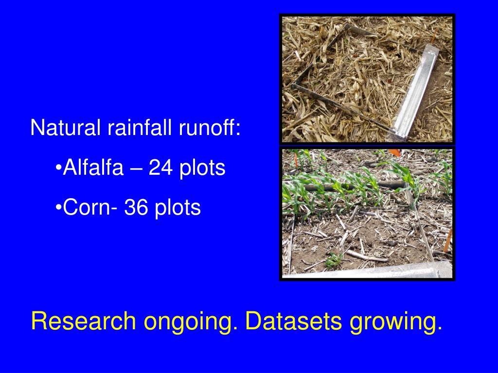 Natural rainfall runoff: