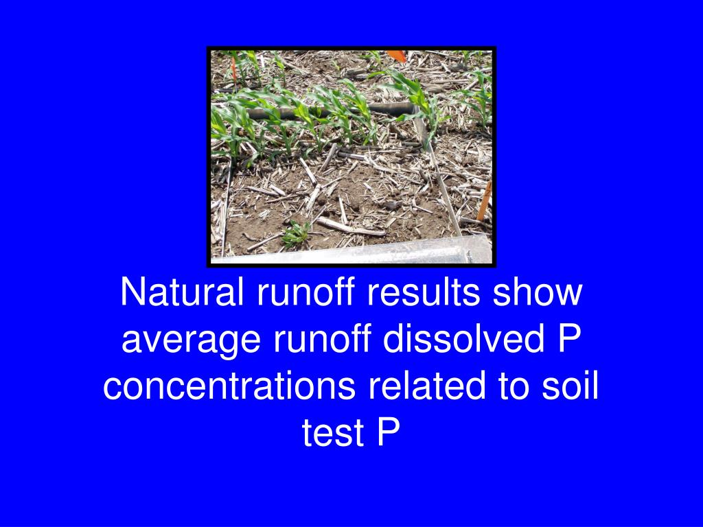 Natural runoff results show average runoff dissolved P concentrations related to soil test P