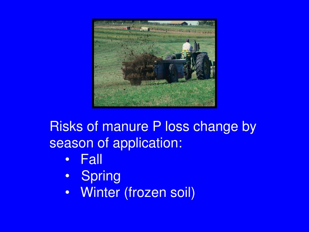 Risks of manure P loss change by season of application: