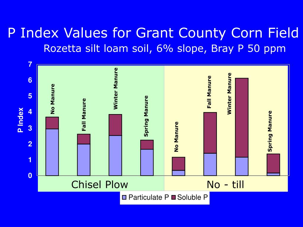 P Index Values for Grant County Corn Field