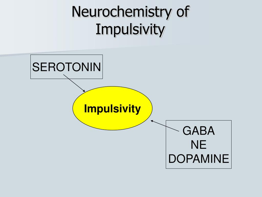 Neurochemistry of