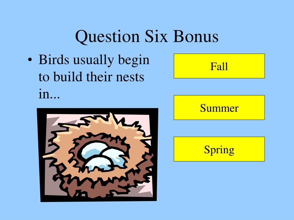 Question Six Bonus