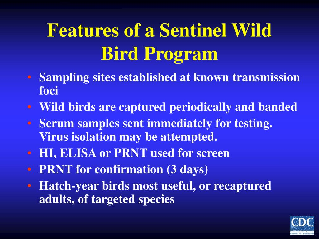 Features of a Sentinel Wild Bird Program