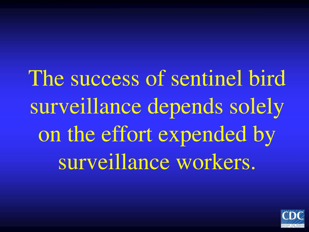 The success of sentinel bird surveillance depends solely on the effort expended by surveillance workers.