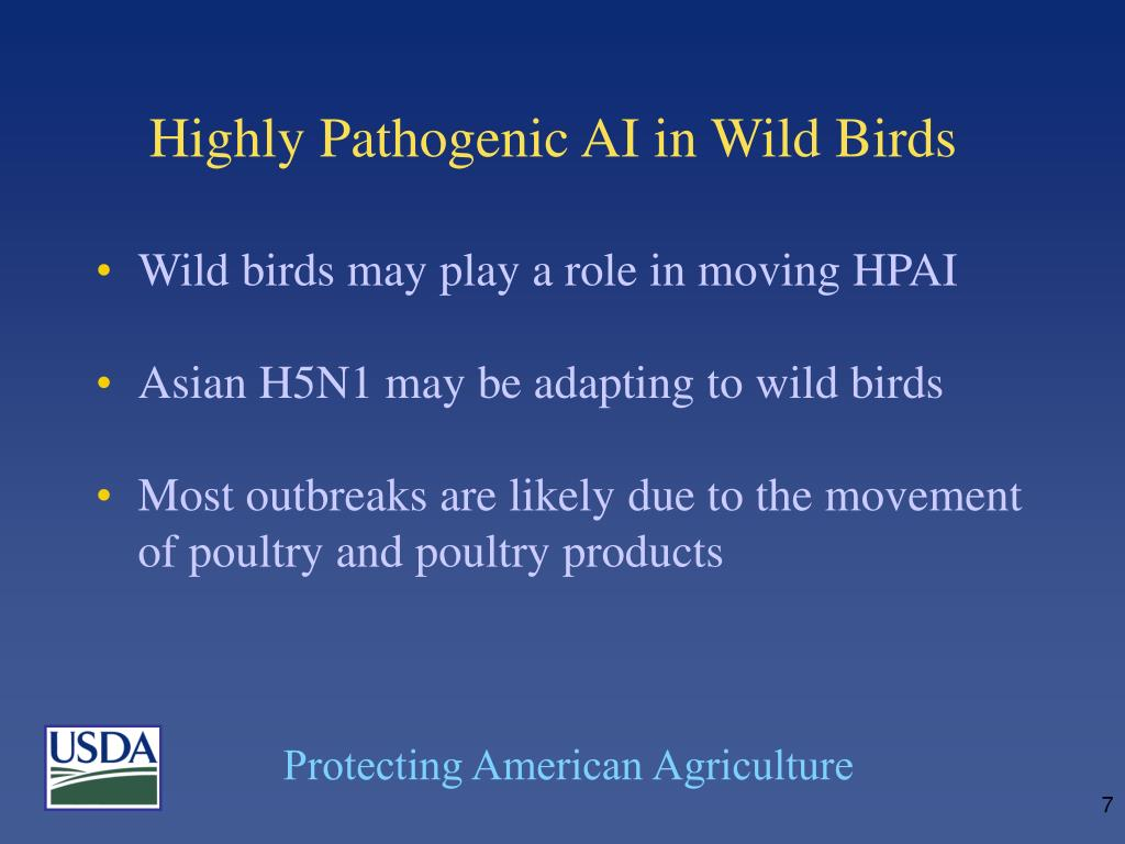 Highly Pathogenic AI in Wild Birds