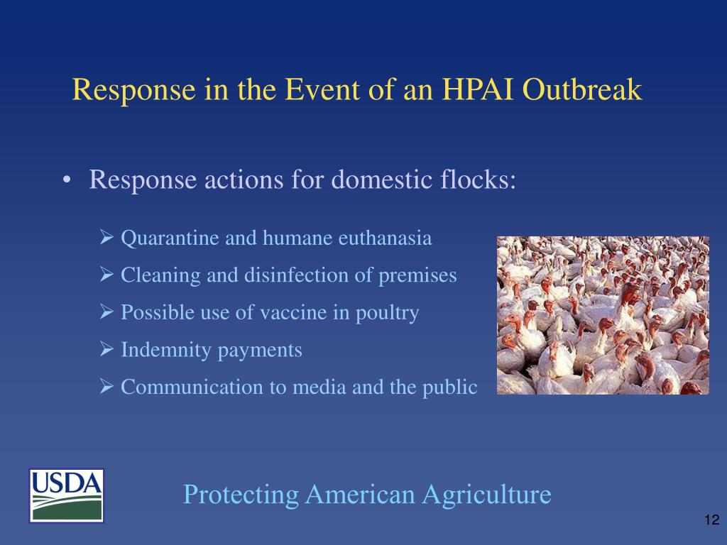 Response in the Event of an HPAI Outbreak