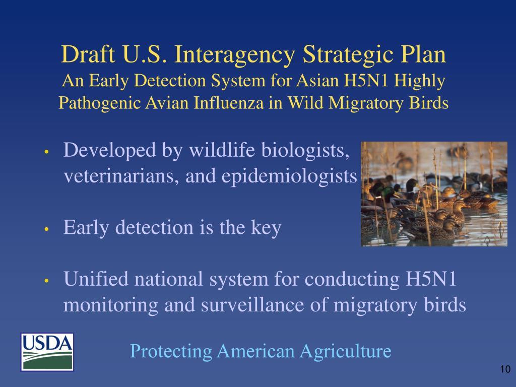 Draft U.S. Interagency Strategic Plan