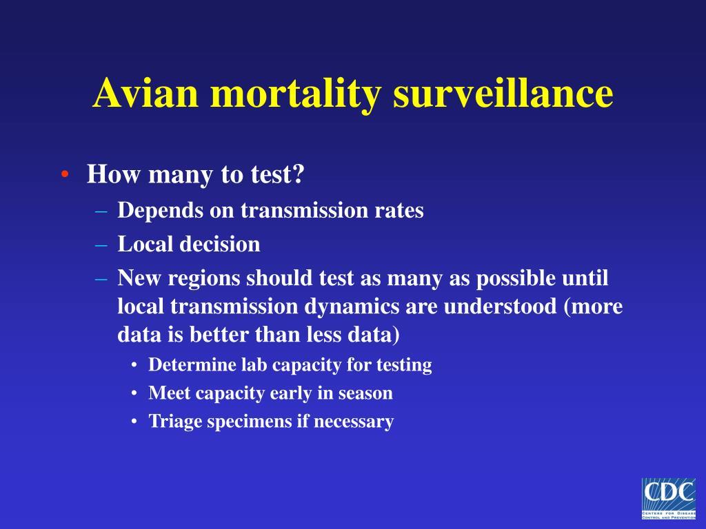 Avian mortality surveillance
