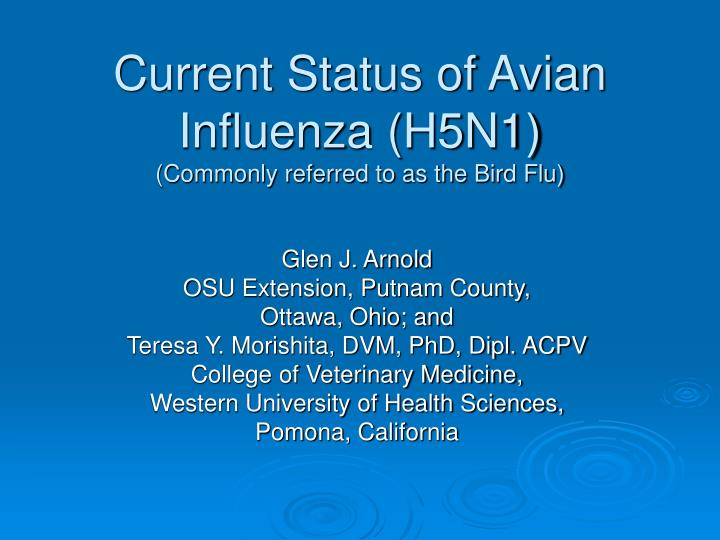 Current status of avian influenza h5n1 commonly referred to as the bird flu