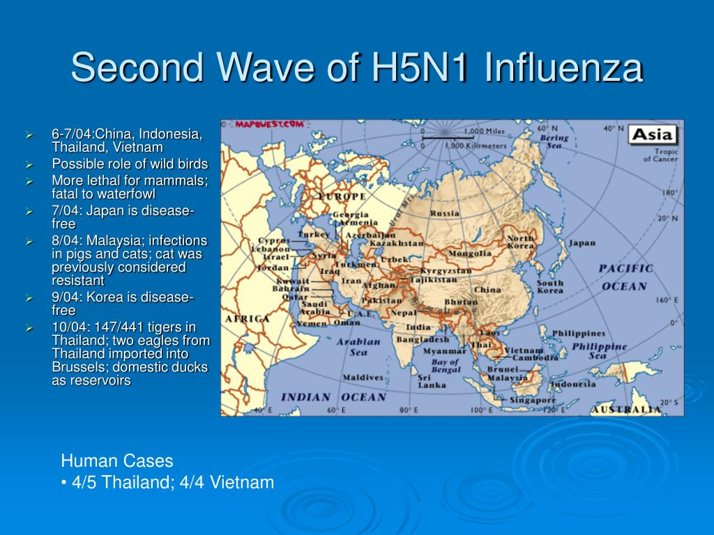 Second Wave of H5N1 Influenza