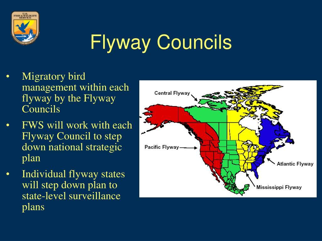 Flyway Councils