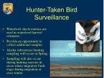 hunter taken bird surveillance