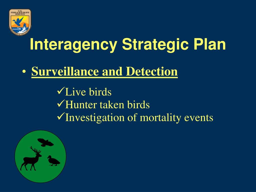 Interagency Strategic Plan