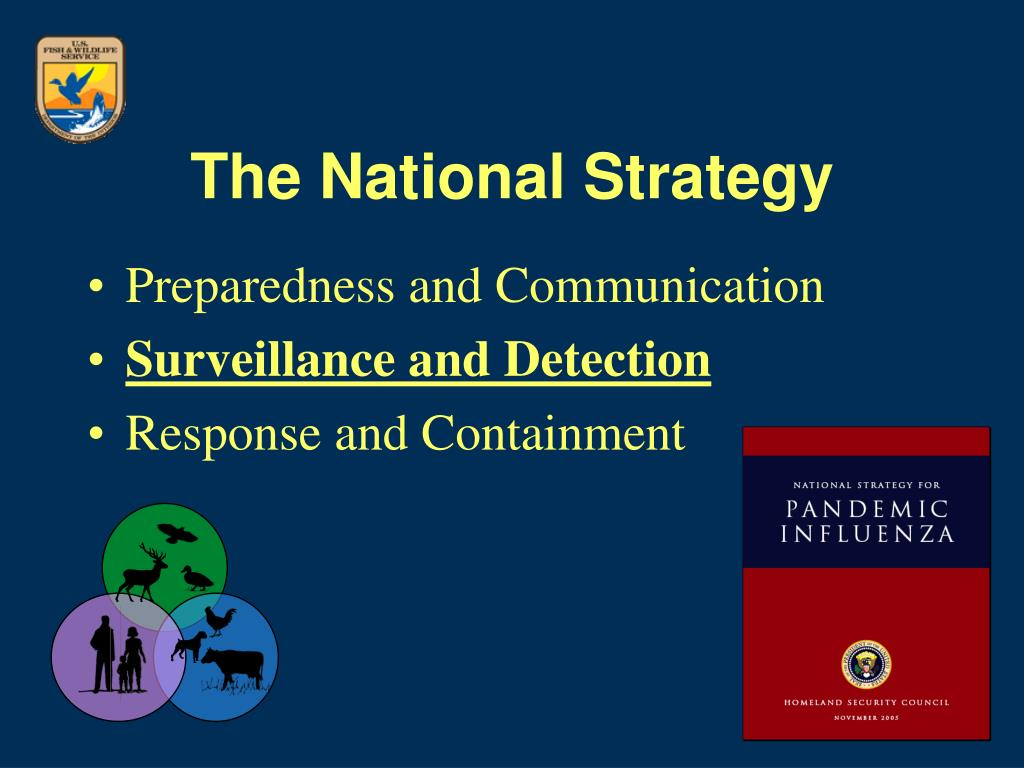 The National Strategy