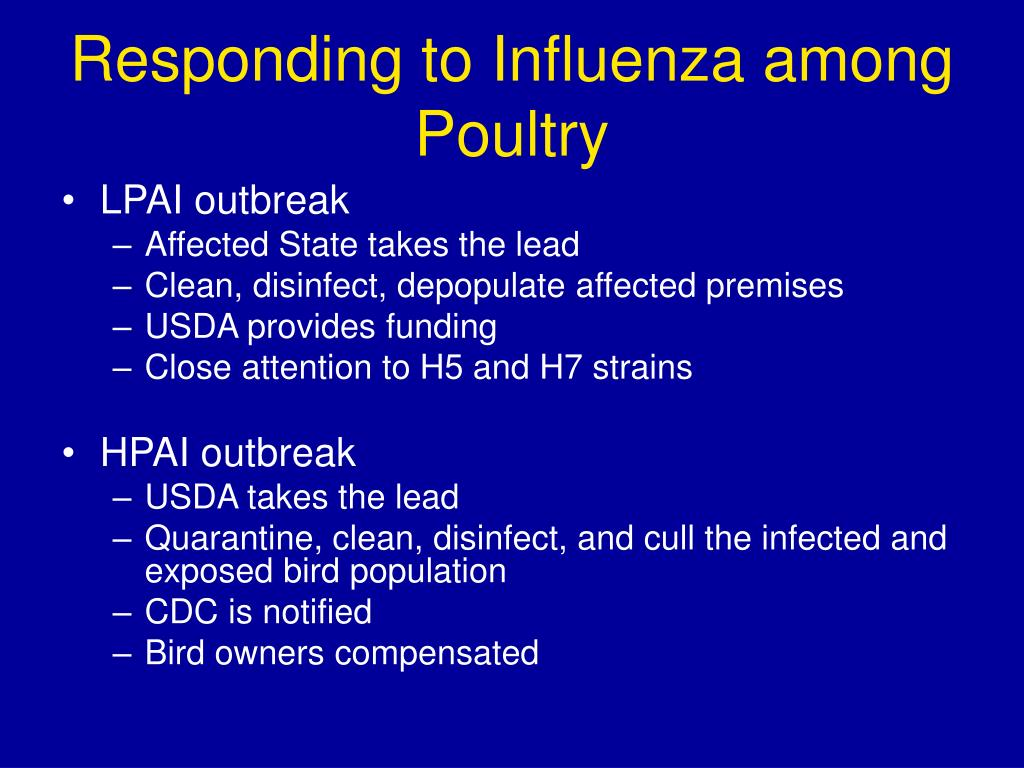 Responding to Influenza among Poultry