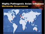 highly pathogenic avian influenza worldwide occurrences