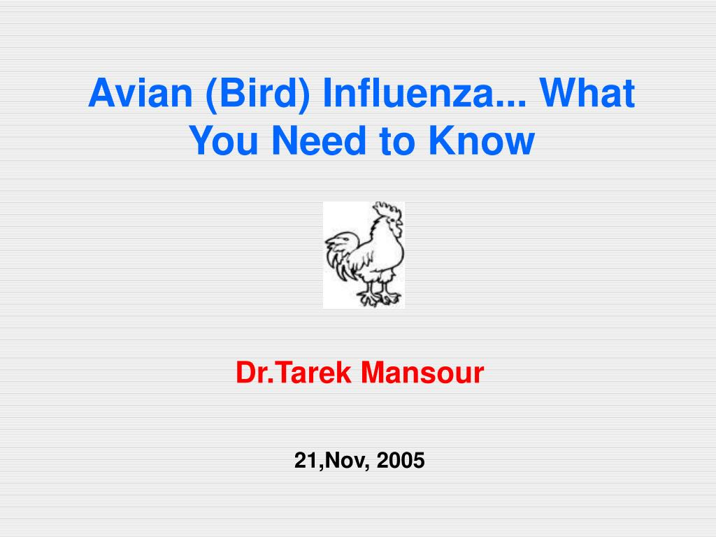 Avian (Bird) Influenza... What You Need to Know