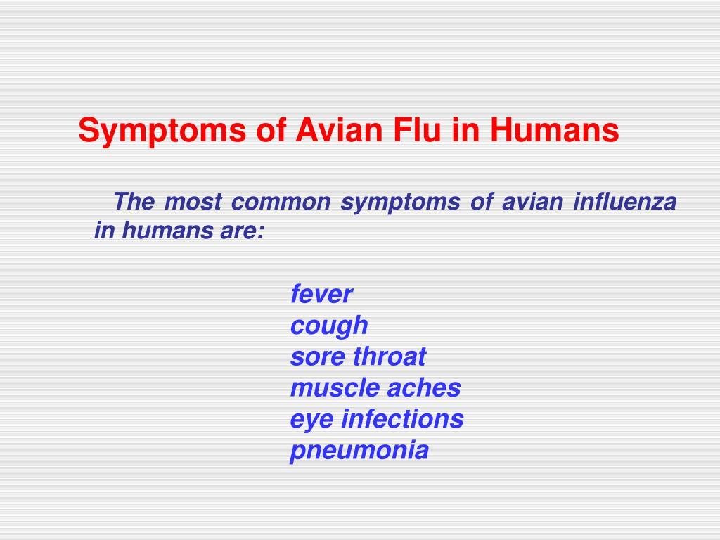 Symptoms of Avian Flu in Humans