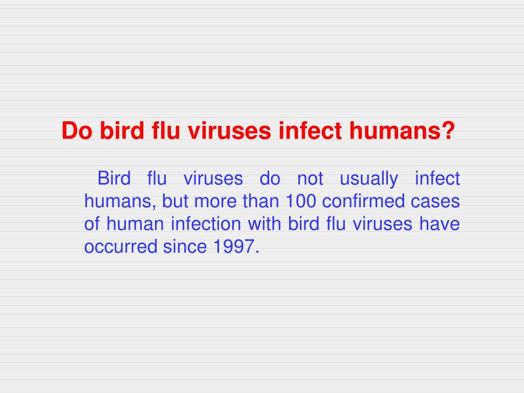 Do bird flu viruses infect humans?