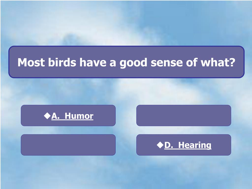 Most birds have a good sense of what?