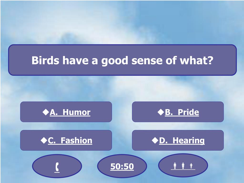 Birds have a good sense of what?