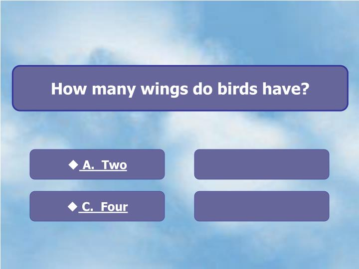 How many wings do birds have?