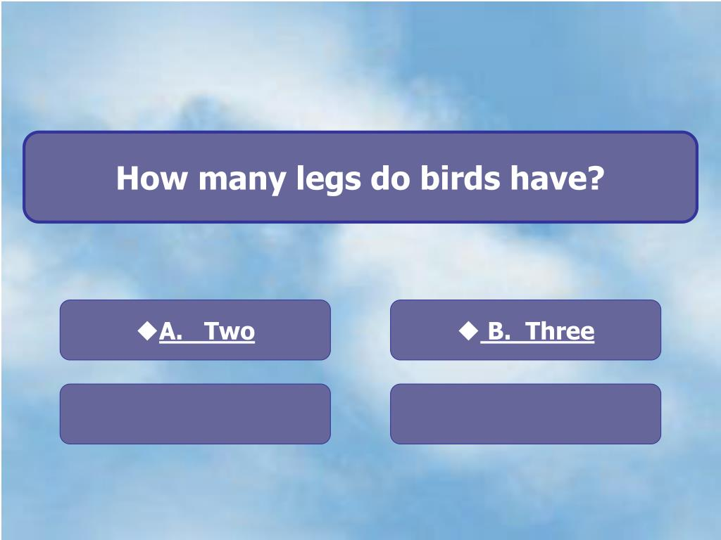 How many legs do birds have?