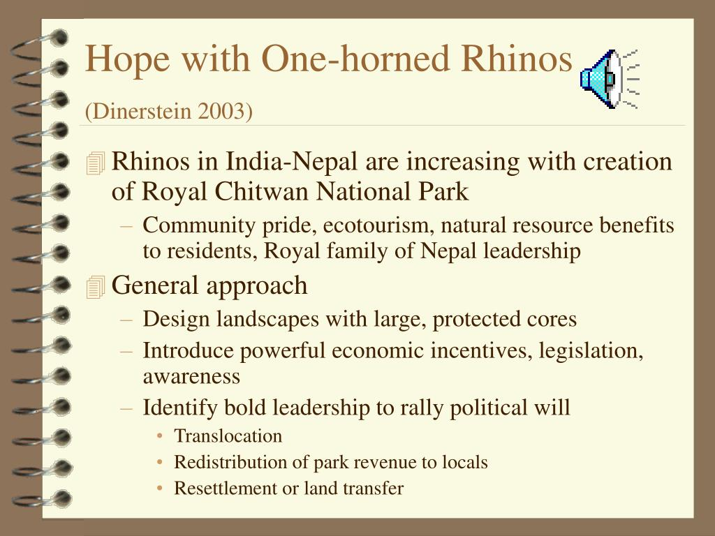 Hope with One-horned Rhinos