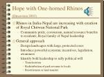 hope with one horned rhinos dinerstein 2003