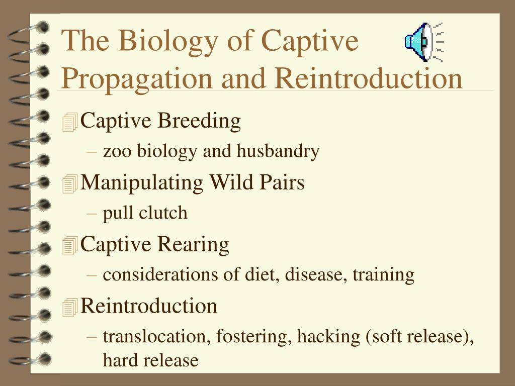 The Biology of Captive Propagation and Reintroduction