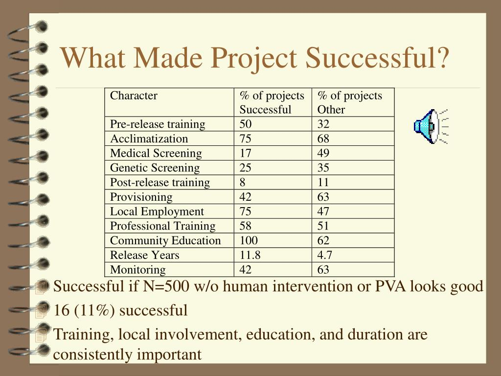 What Made Project Successful?