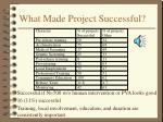 what made project successful