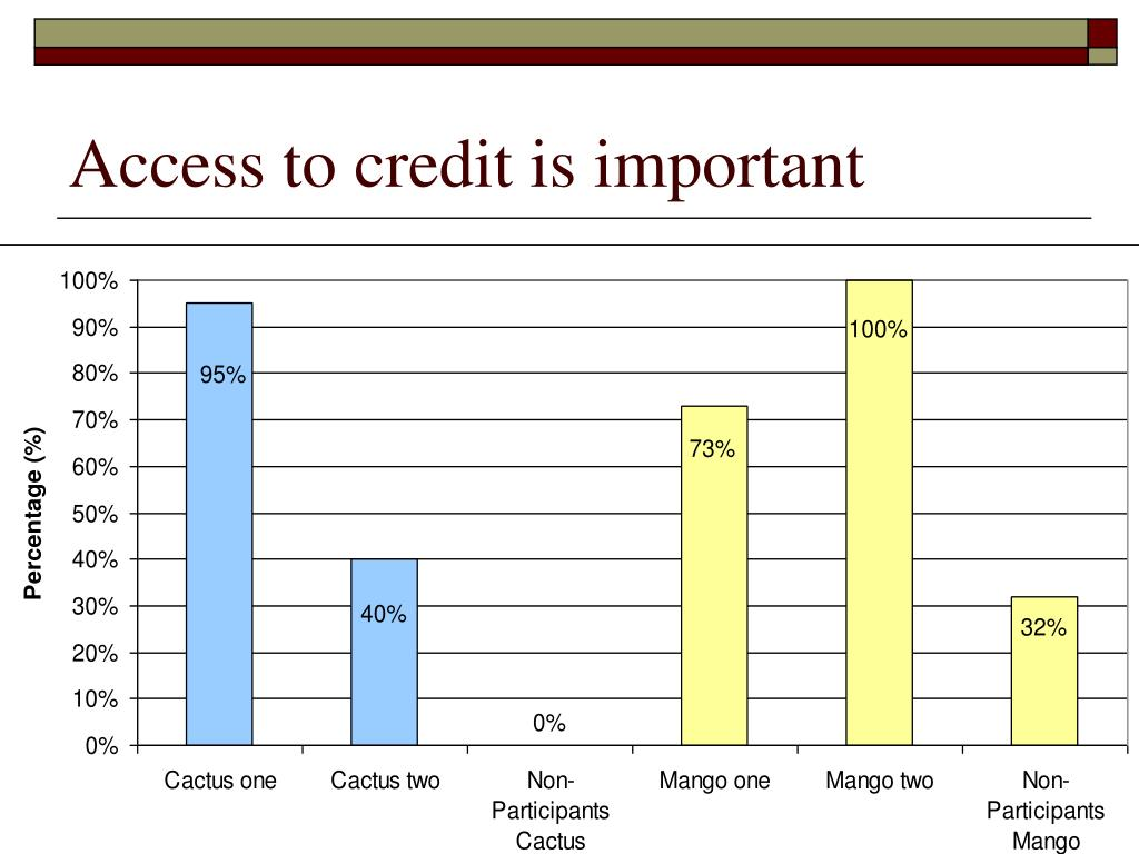 Access to credit is important