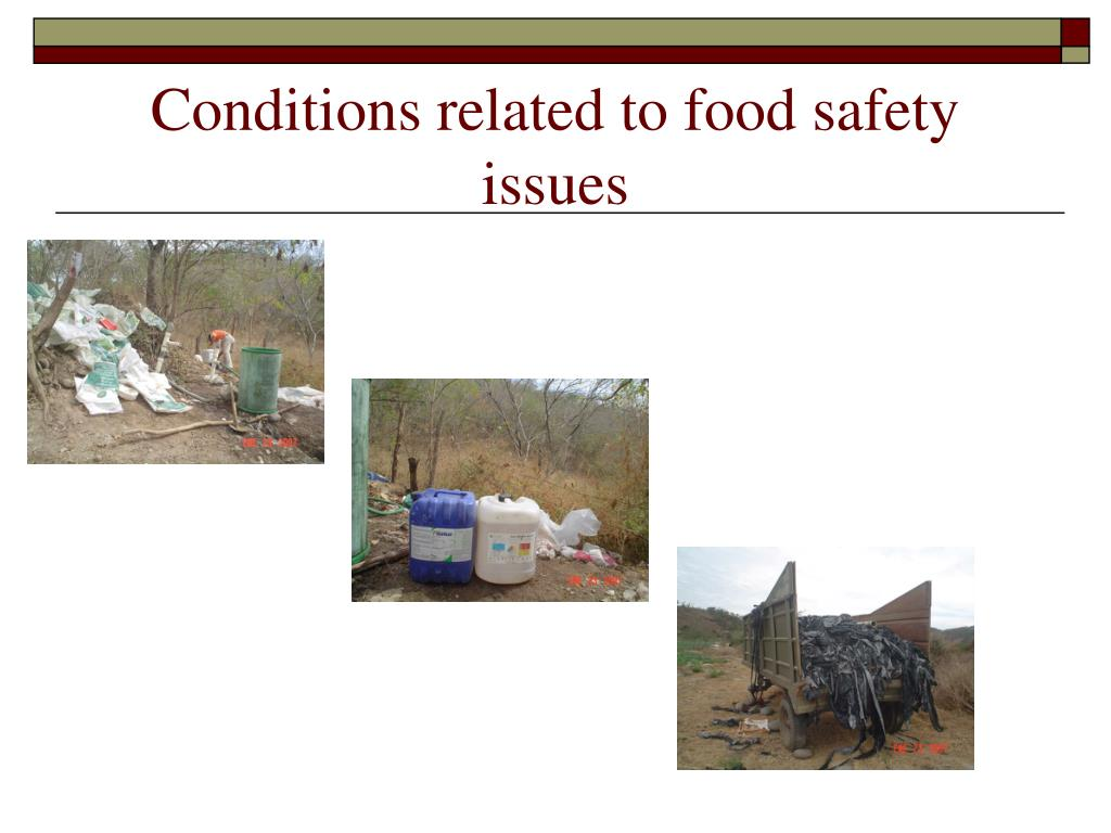 Conditions related to food safety issues