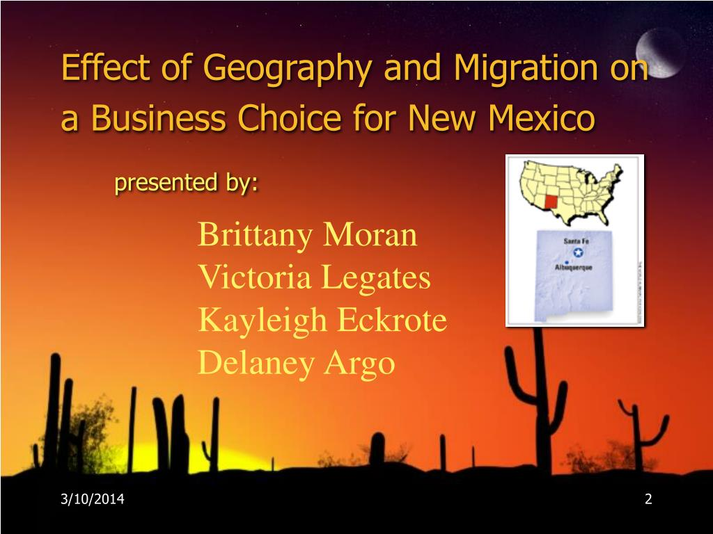 Effect of Geography and Migration on a Business Choice for New Mexico