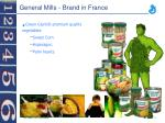 general mills brand in france